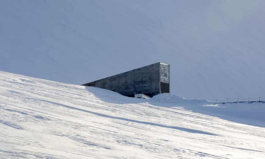In daylight, the concrete portal seed vault looks a bit like an iceberg jutting out of the snow.
