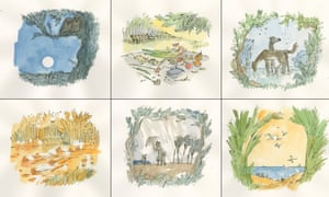 Quentin Blake images