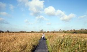 Wicken Fen Cambridgeshire
