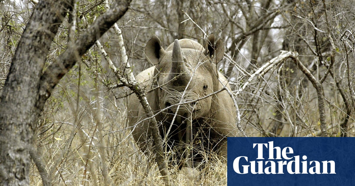 The idea that hunting saves African wildlife doesn't