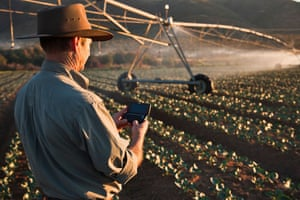 Field with pivot irrigation, South Africa.