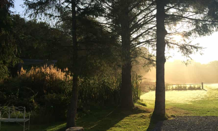 Camping at Ynysfaen, Powys