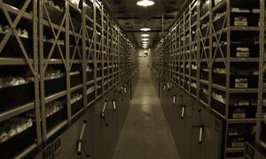 Inside a seed bank, courtesy of Tom Parkin
