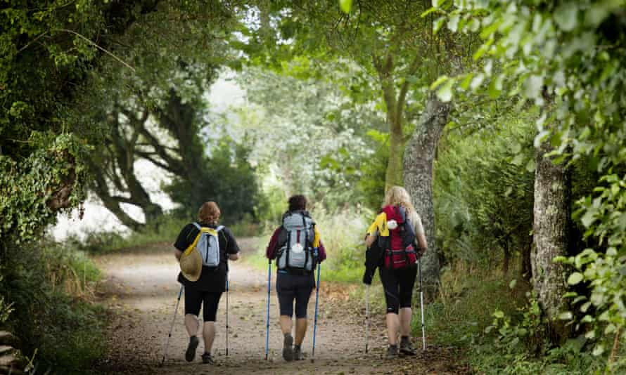 A group of pilgrims on the Camino de Santiago in Spain