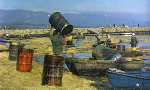 FILE - In this Feb. 7, 1969 file photo, workmen using pitchforks, rakes and shovels attempt to clean up oil-soaked straw from the beach at Santa Barbara Harbor, Calif., used to absorb oil from a week-long leak from an off-shore well which covered local beaches and threatened many others on the southern California shoreline areas. Now in the week of April 20, 2009, lawmakers begin hearings on an energy and global warming bill that could revolutionize how the country produces and uses energy, and could for the first time reduce the pollution responsible for heating up the planet. (AP Photo, FILE)aftermath clean up coast crude disasters ecology environmental disasters offshore drilling oil spills water pollution