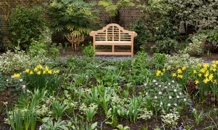 The garden at No 10 Downing Street.