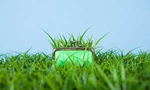 Grass growing out of a purse