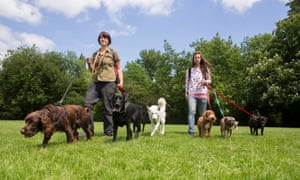 Dog walkers on Peckham Rye, south London this week.