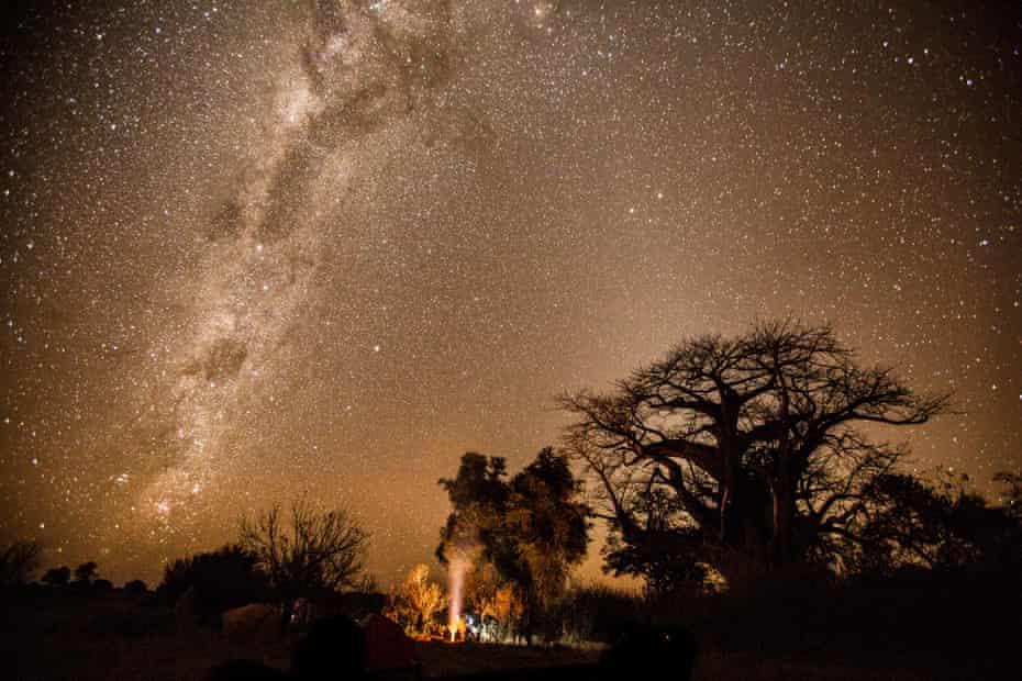Camping beneath a baobab tree in the Okavango Delta.