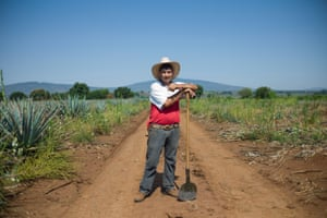 May - Mexico: Tequila Patrón is an ultra-premium tequila dedicated to maintaining its small batch, artisanal production methods. Every step of the Patrón production process is done by hand, starting in the fields where jimadors such as Harmando Acervez harvest the agave under the hot Mexican sun