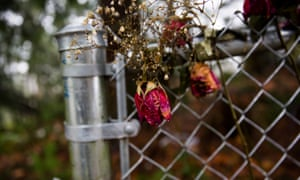 Roses at the site of where Misty Upham was found.
