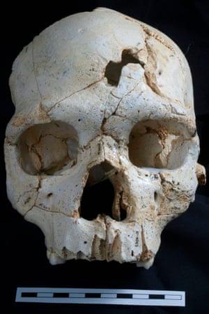 Skull Sima de los Huesos