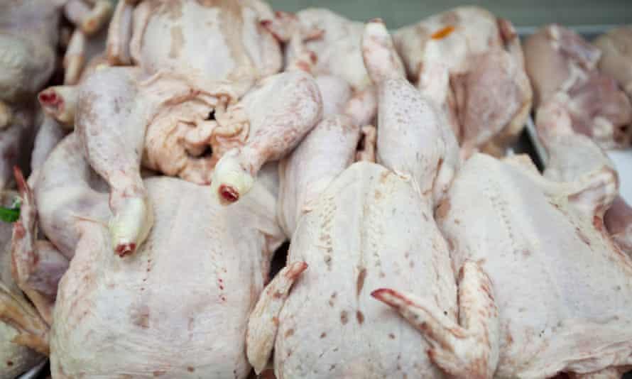 Chickens in a supermarket