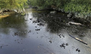 oil from a Bangladeshi oil-tanker is seen on the Shela River in the Sundarbans in Mongla. Bangladesh