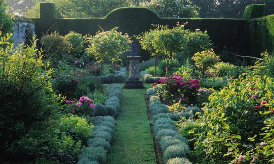 Shrubs up nicely … Cranborne Manor Garden.