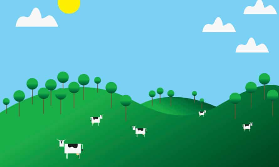 Cows in a field illustration