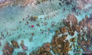 Coral Garden by Marama on Dronestagr.am.