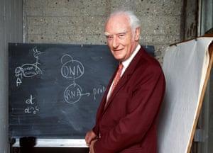 British biophysicist Francis Crick in 1993.