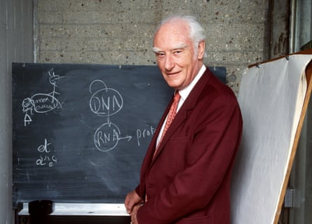 British biophysicist Francis Crick in 1993.