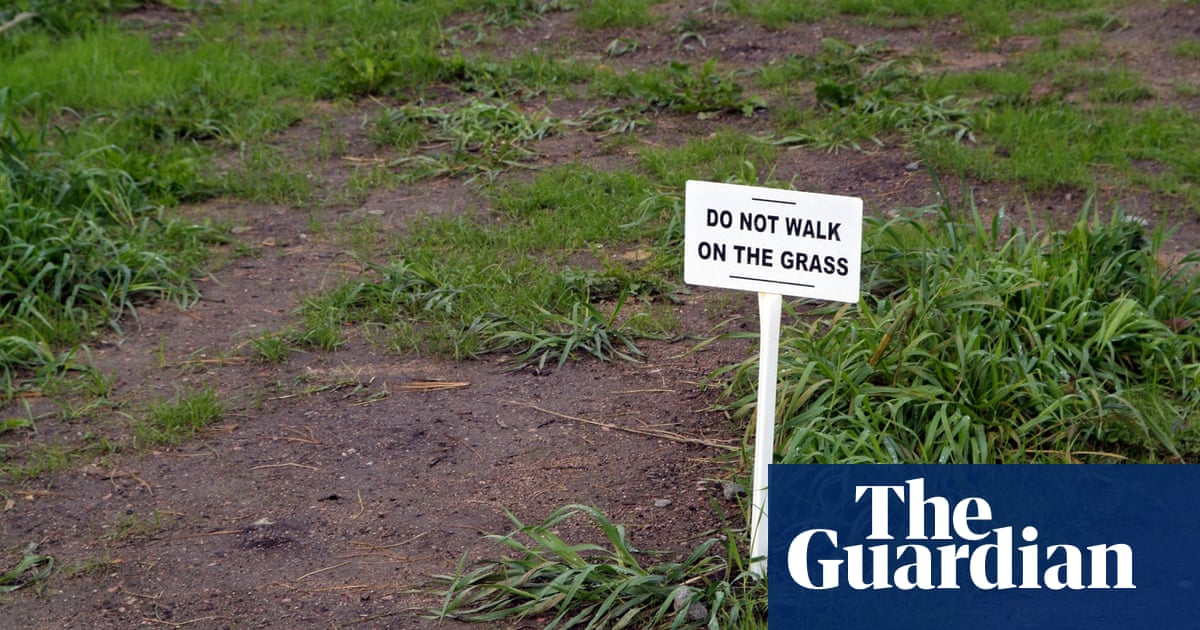 How do I revive my trampled lawn? | Life and style | The Guardian