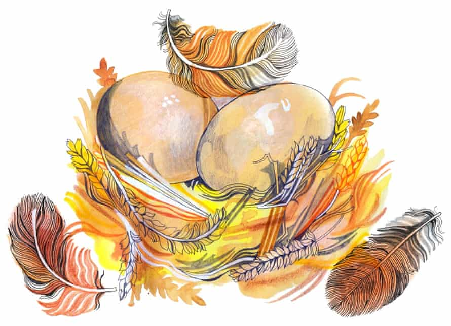 All the eggs in one basket: an illustration