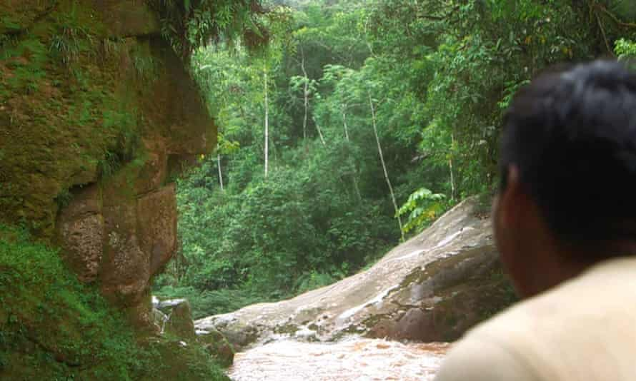 The 'Harakbut Face' in the south-east Peruvian Amazon.
