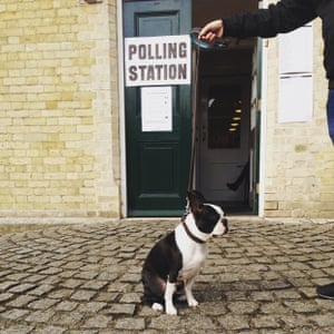 Basil outside the polling station in Wiltshire