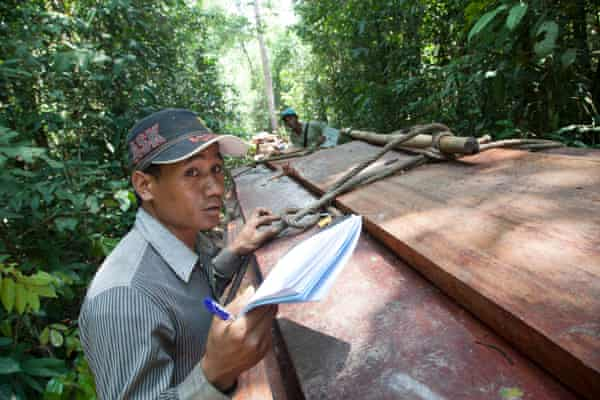 A member of the Prey Lang Community Network documents a consignment of illegally-logged timber in Prey Lang forest, Cambodia, on 23 April.