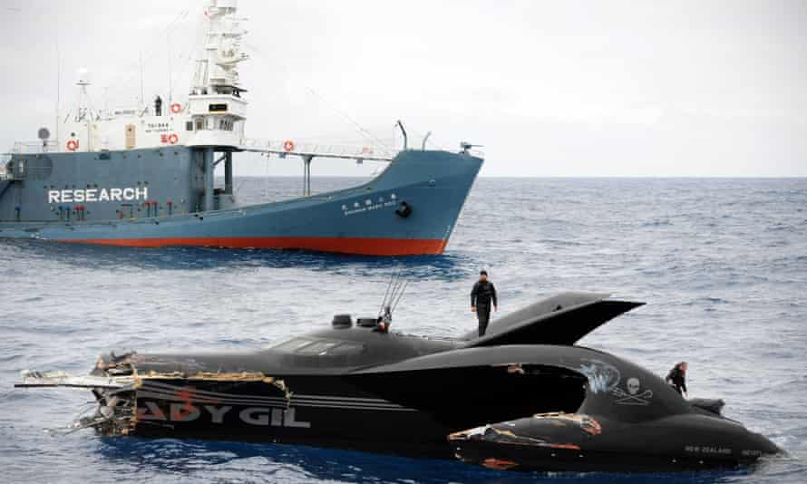The Sea Shepherd's ship Ady Gil, after it collided with Japanese whaling vessel Shonan Maru No 2.