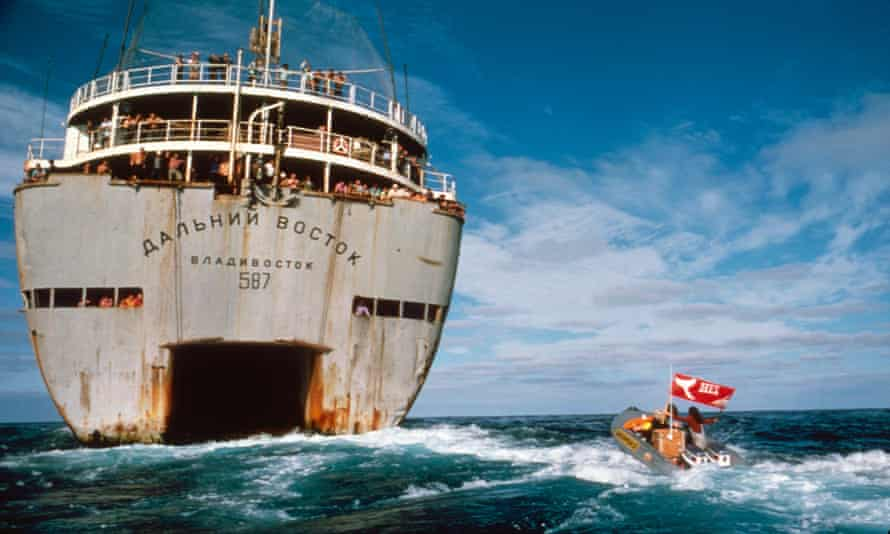 1975 Greenpeace versus Russian whaling vessel during Greenpeace first anti whaling campaign