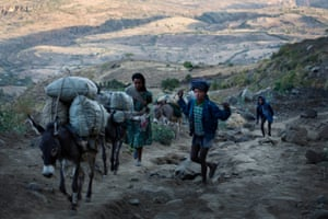 Men walk up a steep road with their donkeys on their way to market near the village of Addis ge keble, near Fiche, Ethiopia Saturday, Feb. 21, 2015. This village is one of hundreds in this Woreda of Gerar Jarso that are inaccessible by cars. When people are ill they have to travel up to twenty kilometers by stretcher that is carried by people to the nearest hospital.
