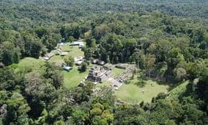 Dense Belize jungle
