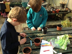 Pupils labelling their plants