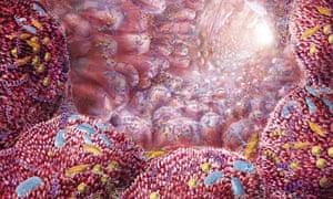 An artist's impression of human intestinal microbes.