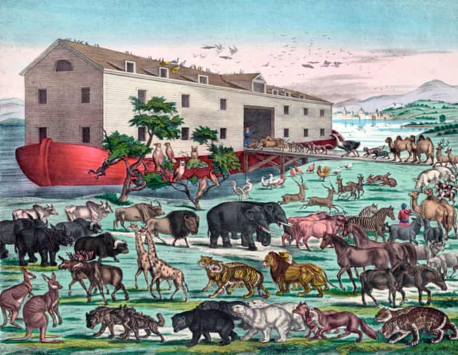 Noah's Ark and the General Deluge