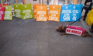 """A dog wearing a small """"No Nukes"""" placard lies down in front of a row of CND anti-Trident placards at a rally at the Ministry of Defence, calling for the UK government to scrap the ageing Trident nuclear deterrent."""