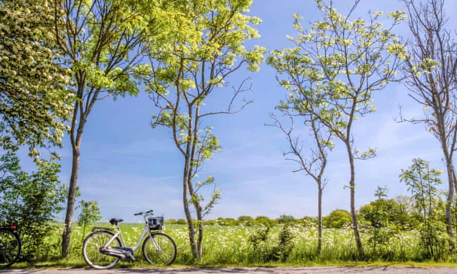 Spring trees with bicycle on Bornholm, Denmark.