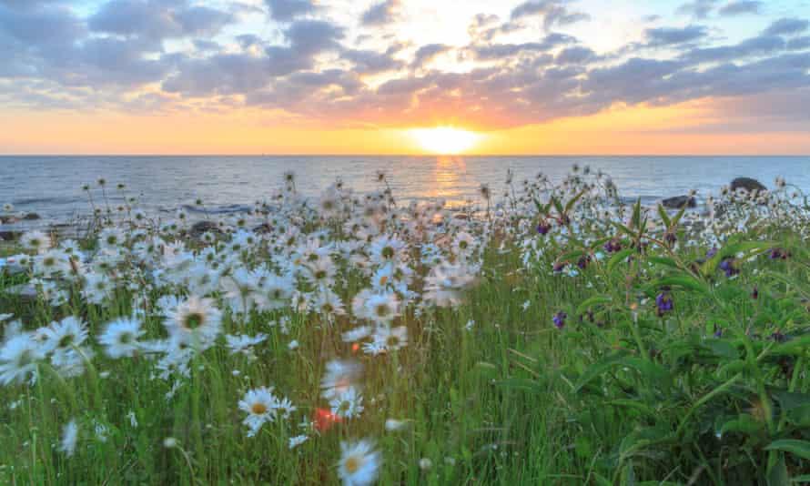 Sunset over sea --- Image by   torolfvaagan/RooM The Agency/Corbisbeautybeauty in natureBornholmCapital Region of DenmarkcloudsdaytimeDenmarkEuropeeveningflowergrasslandgrowthhorizon over wateridylliclens flarelightlushmeadownatural worldnobodyoutdoorsreflectionripplesrural sceneScandinaviascenicseaseasonsserenitysummersunsetsunshinewaterwildflowersZealand