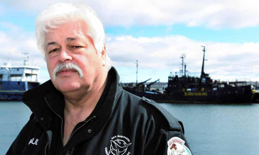 Paul Watson, former head of the Sea Shepherd Conservation Society, continues to to lead the organization despite growing pressure.