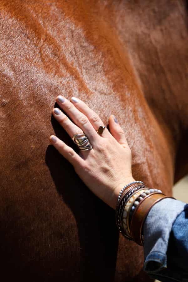 Sarah Horse
