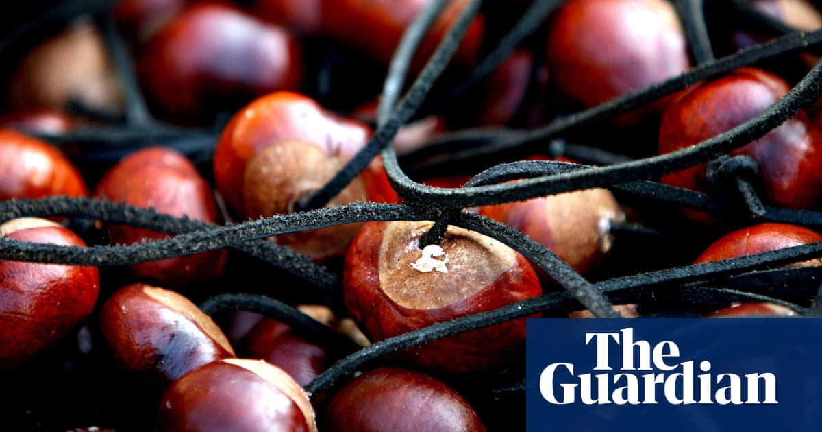 Surely there must be a use for horse chestnuts? | Life and