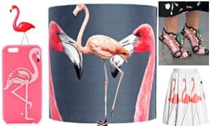 Flamingo fever.