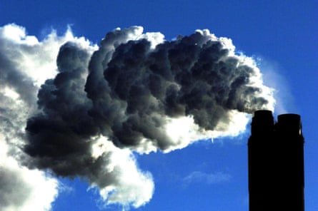 Coal-fired thermal power plants belch toxic gases that could impact wildlife and human health, and forest quality in the neighbourhood.