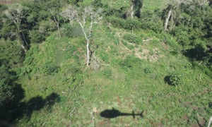 The shadow of a Senad helicopter is seen as the agency seeks out marijuana plantations.