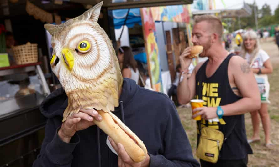 An owl tries to eat a sandwich at Glastonbury