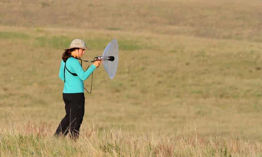 Tayler recording birdsong