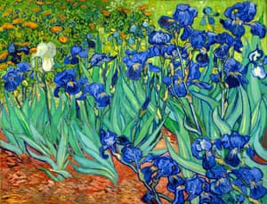 'I will enjoy them en masse, like the Van Gogh painting, with one jostled against the next': Irises by Vincent van Gogh (1889).