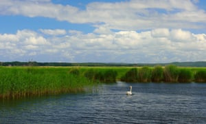 The island is situated south of the village Przytór, in between the river arms Gęsia and Kacza.