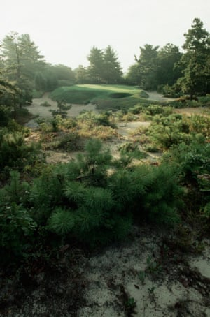 Bushes and shrubs in the rough near the green for the 10th hole at Pine Valley.