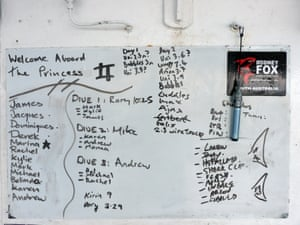 Known sharks are listed on the whiteboard on the Rodney Fox boat.